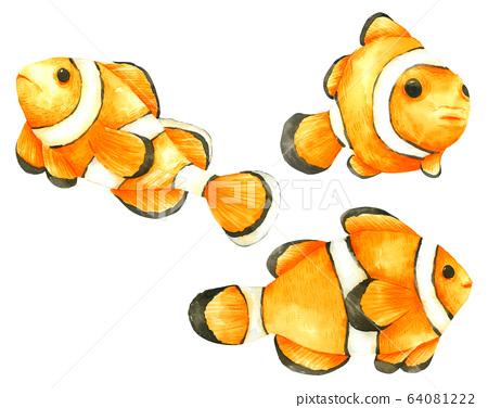 Nemo Fish watercolour set isolated on white background 64081222