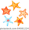 Starfish watercolour set isolated on white background 64081224