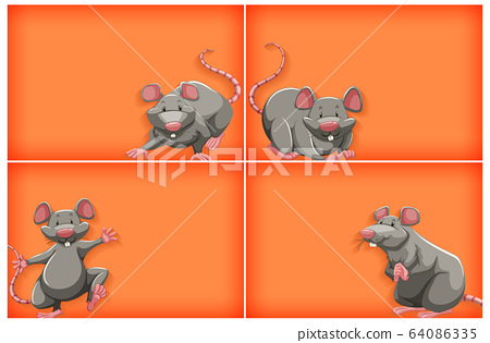 Background template with plain color and gray 64086335