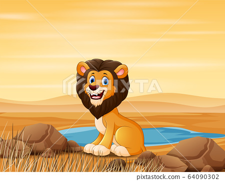 A lion sitting by the small pond on desert 64090302
