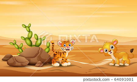 Baby tiger and lion playing at desert landscape 64091001