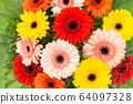 Gerbera flowers bouquet Floral background 64097328