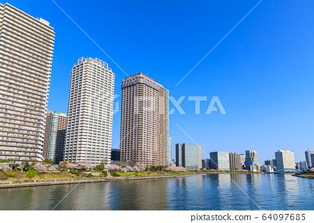 도쿄 대 가와바타 리버 시티 21의 벚꽃 64097685