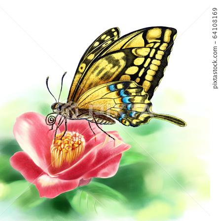 花和蝴蝶 64108169