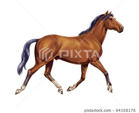 馬精 64108178
