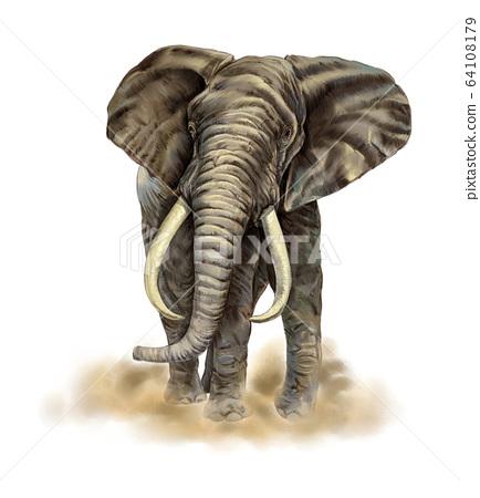코끼리 세밀화 64108179
