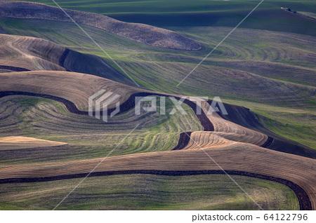 Wheat field landscape 64122796