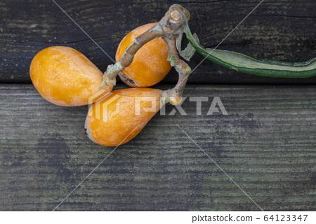 枇杷果,琵琶, 水果,ビワ果実、リュート、果実、Loquat fruit, lute, fruit, 64123347