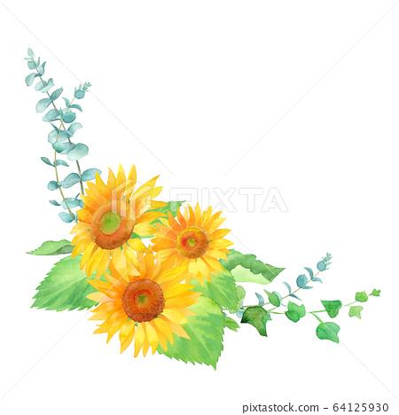 向日葵和綠葉佈置裝飾,水彩插圖 64125930