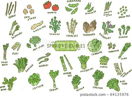手繪春季蔬菜集 64135976