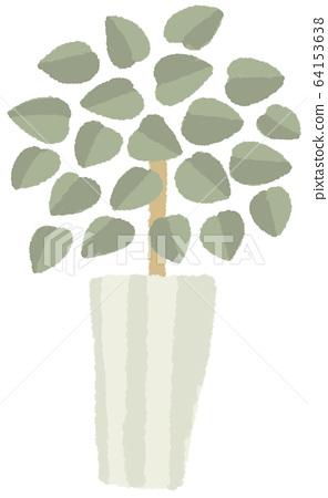 一種植物 64153638