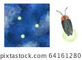 Firefly firefly 64161280