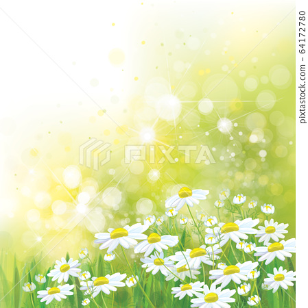 Vector summer,  nature background.   64172780