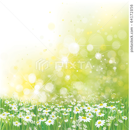Vector summer,  nature background.  64172856