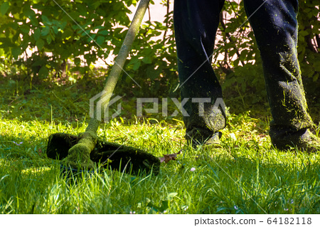 lawn care maintenance. 64182118