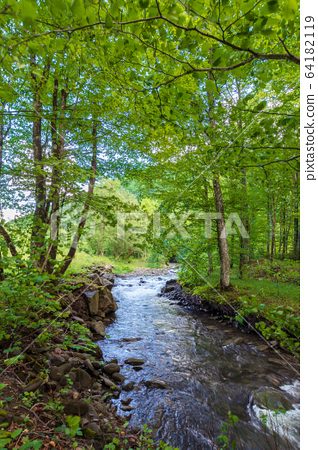 beautiful landscape of rapid mountain river. flow 64182119