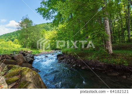 beautiful landscape of rapid mountain river. flow 64182121