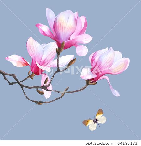 色彩豐富的花卉素材組合和設計元素 64183183