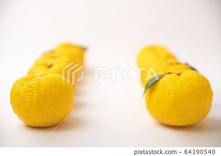 fresh fruit concept. close up of lemons and citrons 037 64190540