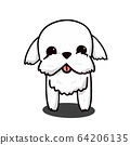 Cute Maltese White Puppy Cartoon Vector, for 64206135