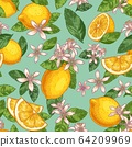 Lemon blossom seamless pattern. Hand drawn yellow lemons with green leaves and citrus flowers. Botanical garden fruits vector illustration 64209969