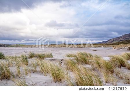 The dunes at Maghera Beach near Ardara, County Donegal - Ireland. 64217659