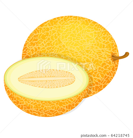 Fresh Whole And Half Melon Fruit Isolated On White Stock Illustration 64218745 Pixta This feature requires flash player to be installed in your browser. pixta