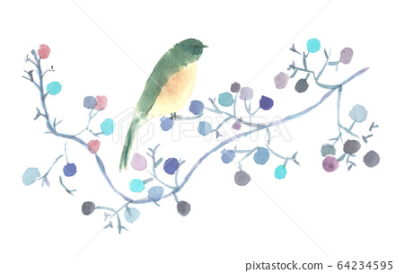 Bird and tree nuts painted in watercolor 64234595