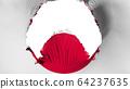 Big hole in Japan flag 64237635