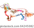 Colorful decorative standing portrait of dog 64245082