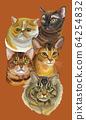 Postcard with cats-2 64254832