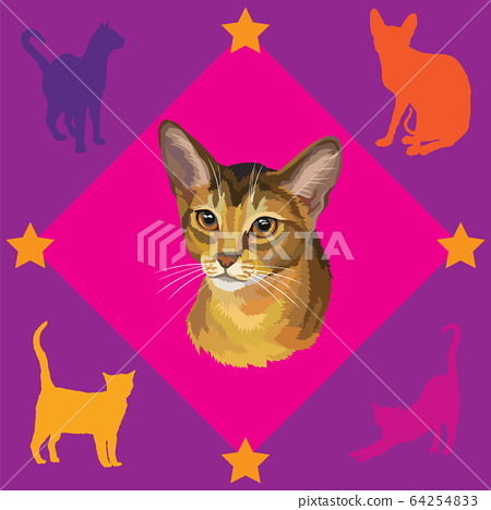 Seamless Pattern with Abyssinian Cat 64254833
