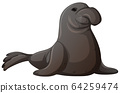 Gray seal on white background 64259474
