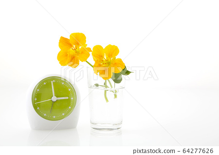 Watch and flowers 64277626