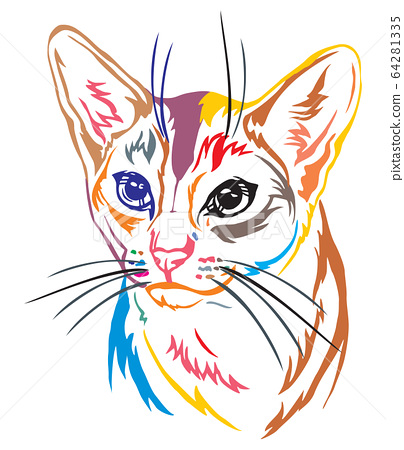 Colorful decorative portrait of Abyssinian Cat 64281335