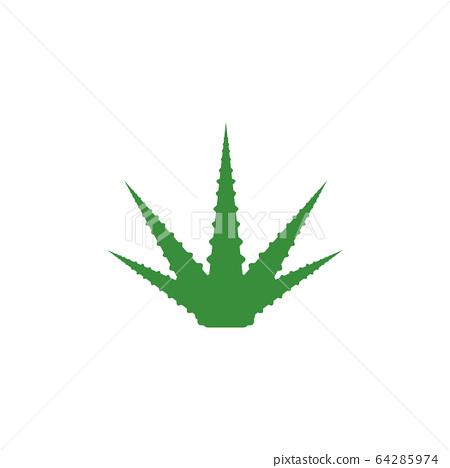 Aloe vera graphic design template isolated 64285974