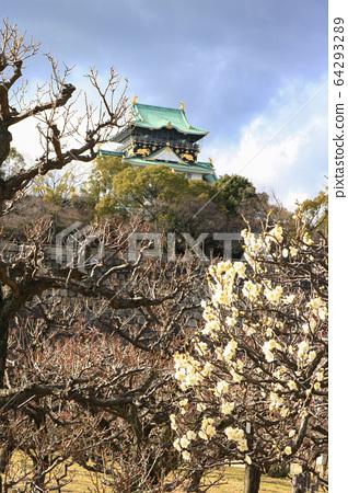 Osaka Castle and plum blossoms 64293289