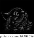 The Vector logo cat for tattoo or T-shirt design or outwear.  64307054
