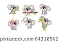 Cartoon Koala Animal with Big Ears and Nose Climbing Bamboo and Eating Leaves Vector Set 64318502