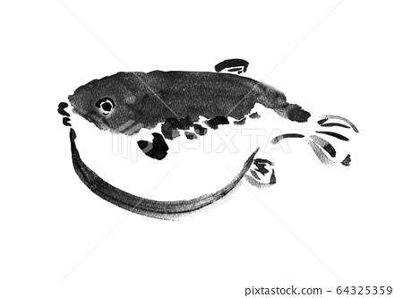 生物,魚/魚和貝類,日本食品,河豚,經典菜,腫脹,水墨畫,白色身體,腫脹,海鮮,海鮮的插圖 64325359