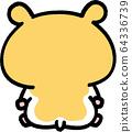金仓鼠后视图 64336739