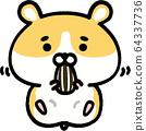 金仓鼠吃葵花籽 64337736