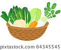 Basket of winter vegetables 64345545