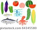 Summer ingredients vegetables, fruits and fish set 64345580