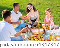 Smiling woman with family at picnic 64347347
