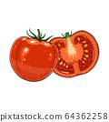 tomato on white background 64362258