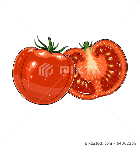 tomato on white background 64362258