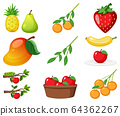 Large set of different types of fruits on white 64362267
