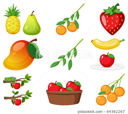 Different kinds of fruits. Illustration of the diffrent kinds of fruits on  a white background.