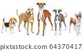 Vector set of Dogs different breed 64370417